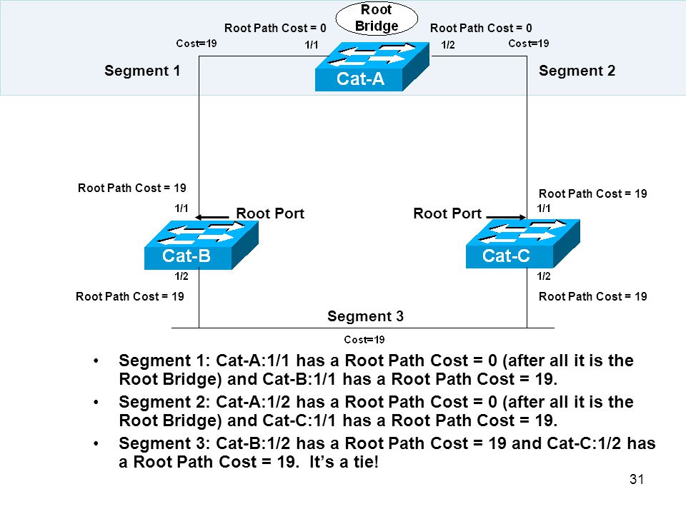 Root Path Cost = 0 Root Path Cost = 0. Segment 1. Segment 2. Root Path Cost = 19. Root Path Cost = 19.
