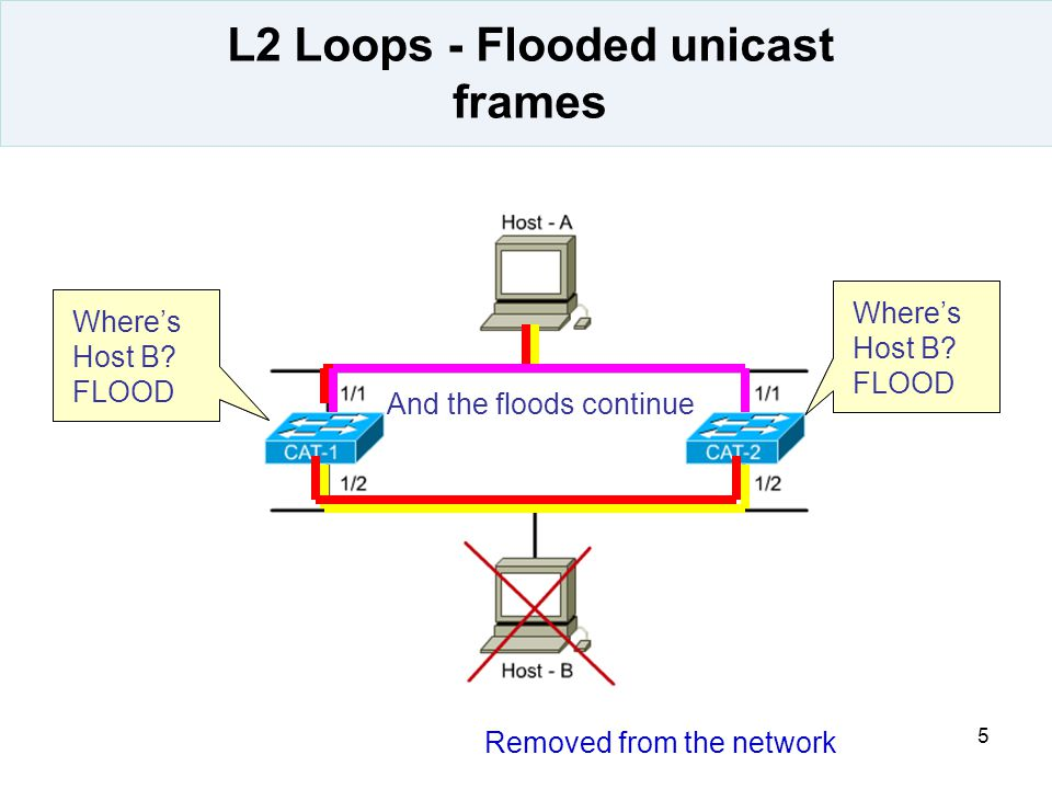 L2 Loops - Flooded unicast frames