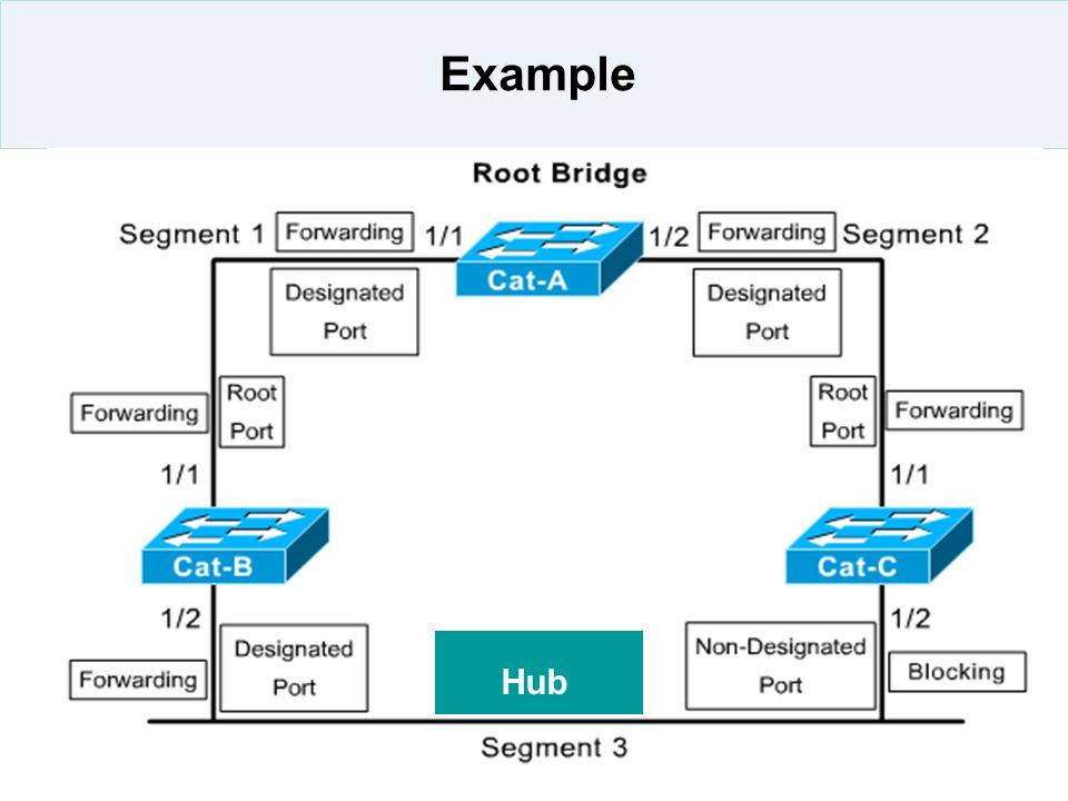 Example Hub