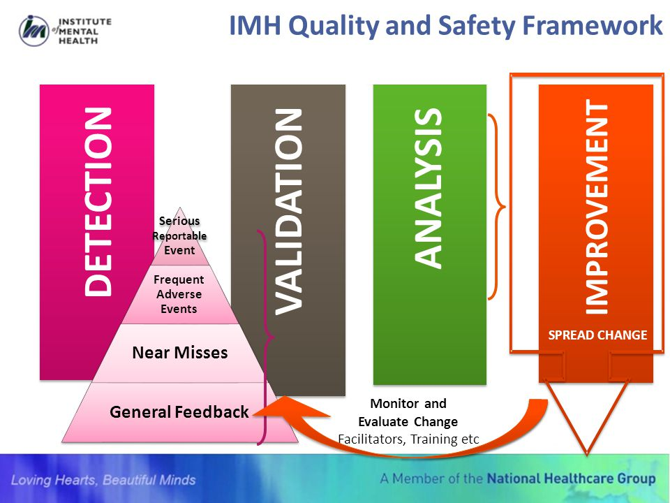 IMH Quality and Safety Framework