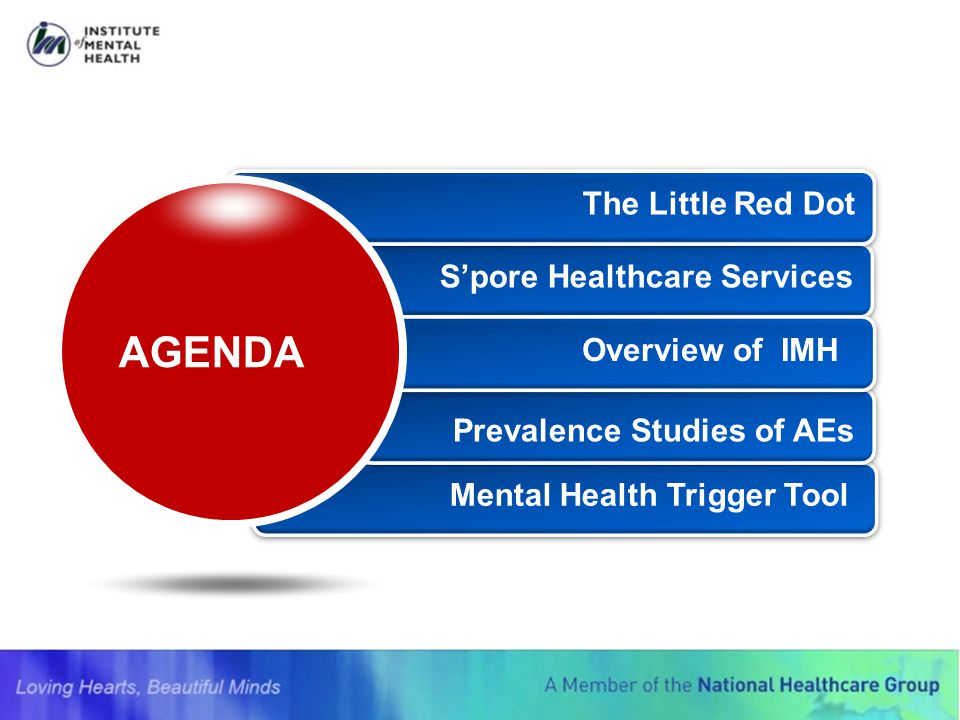 AGENDA The Little Red Dot S'pore Healthcare Services Overview of IMH