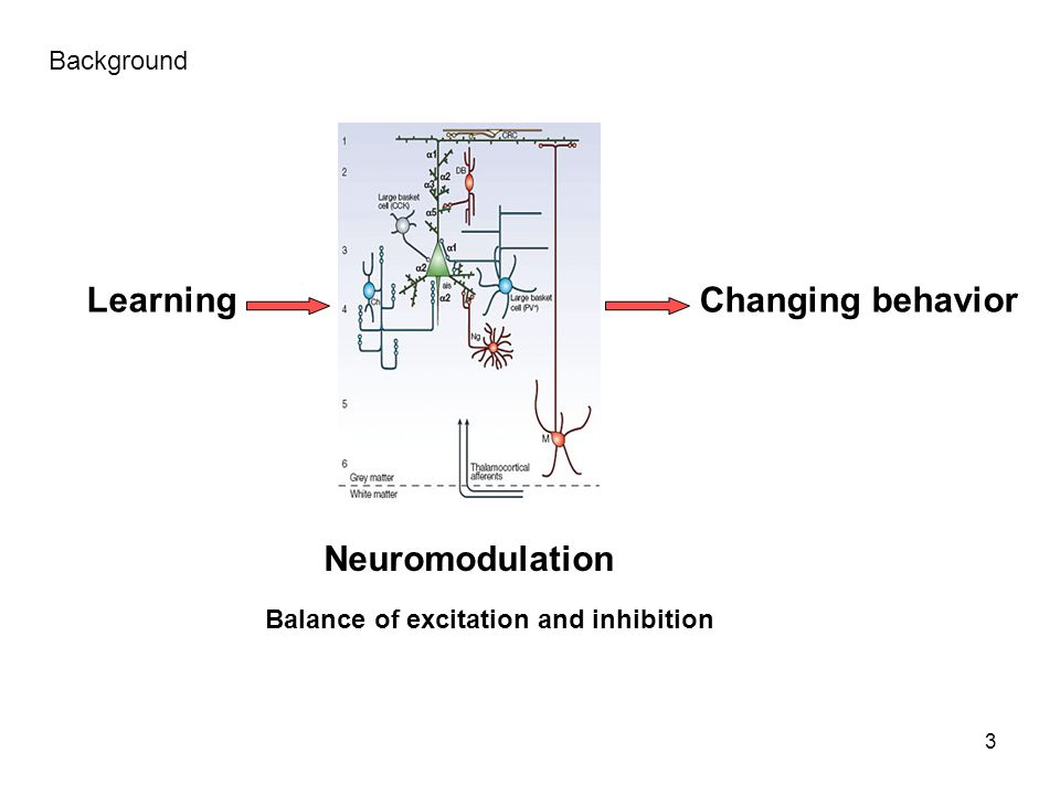 Learning Changing behavior Neuromodulation Background