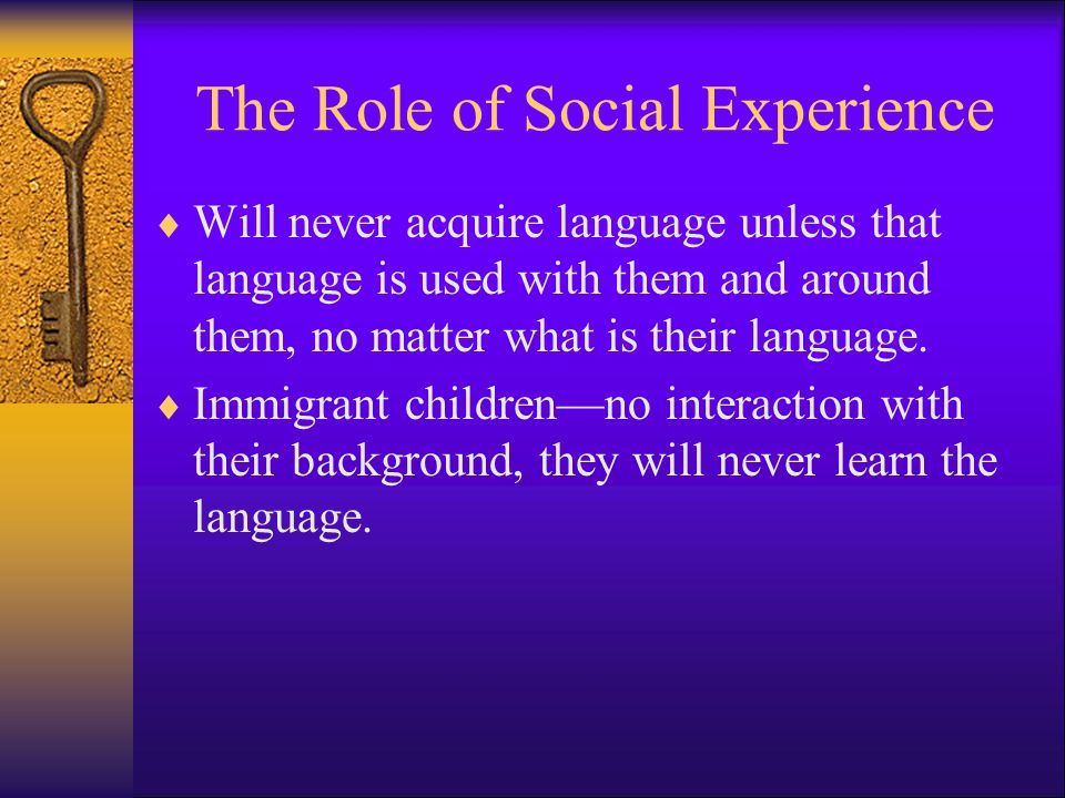 The Role of Social Experience