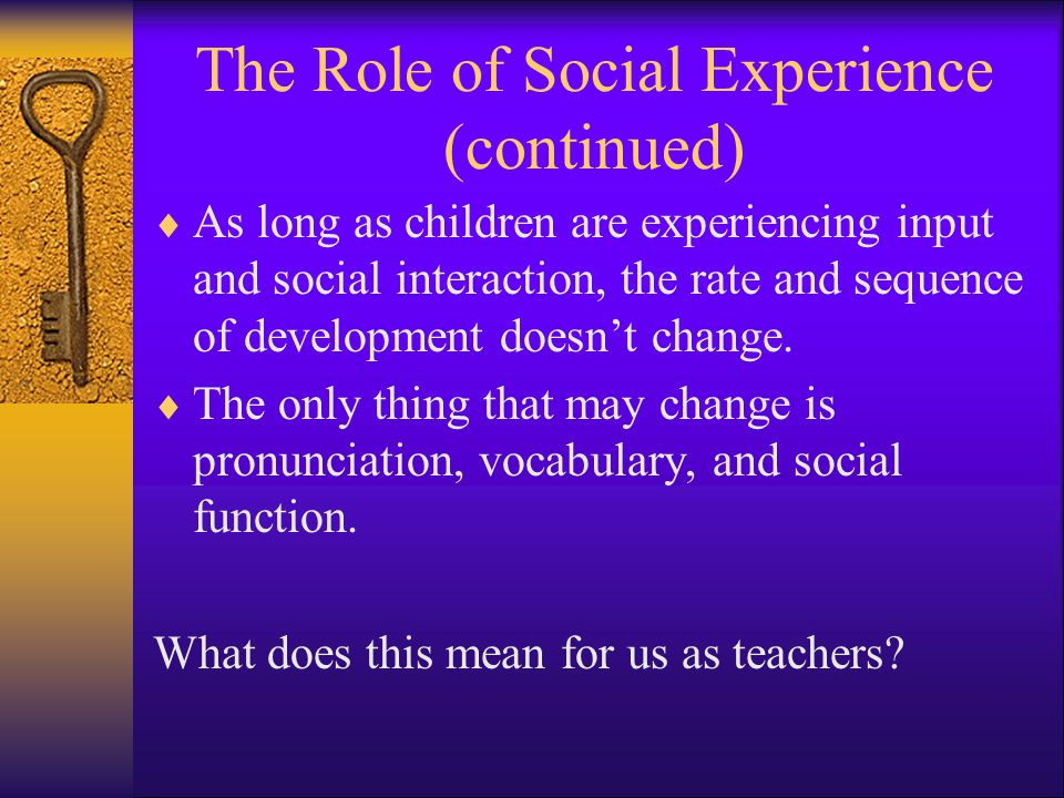 The Role of Social Experience (continued)