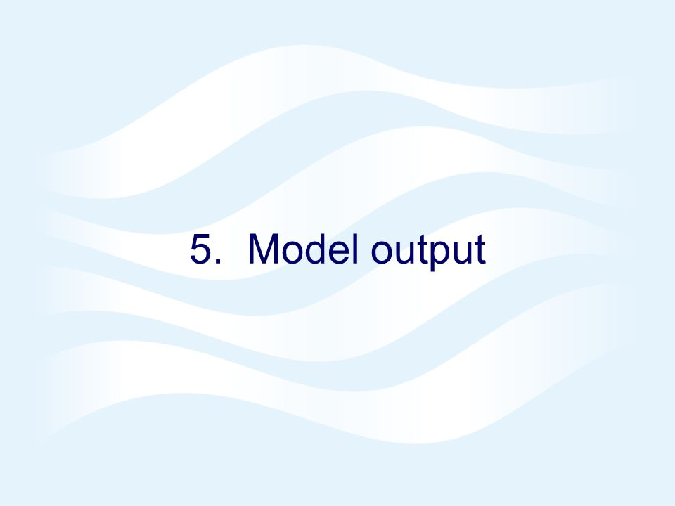 5. Model output
