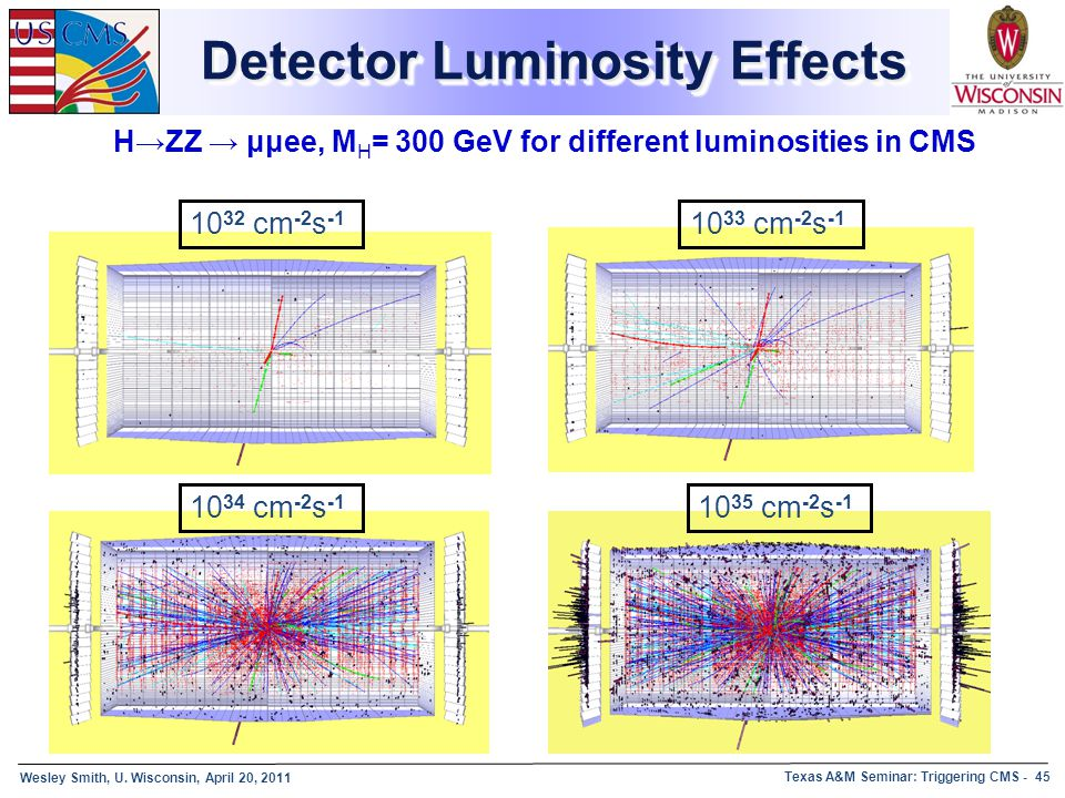 Detector Luminosity Effects