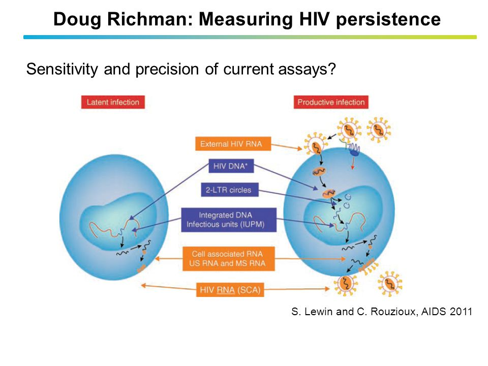 Doug Richman: Measuring HIV persistence