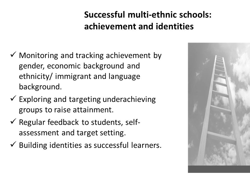 Successful multi-ethnic schools: achievement and identities