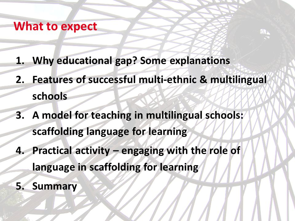 What to expect Why educational gap Some explanations