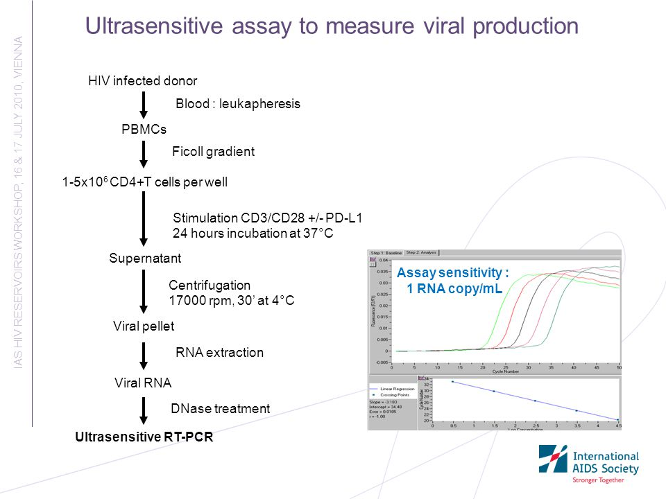 Ultrasensitive assay to measure viral production