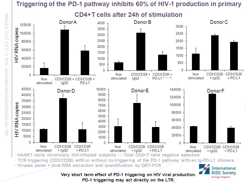 Triggering of the PD-1 pathway inhibits 60% of HIV-1 production in primary CD4+T cells after 24h of stimulation