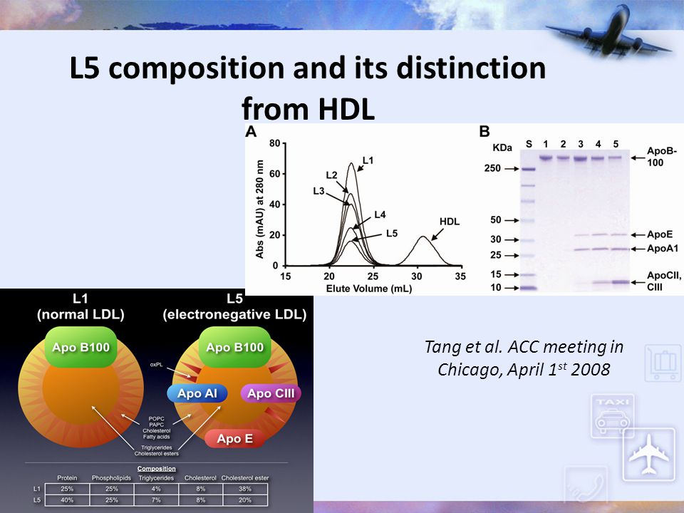 L5 composition and its distinction from HDL