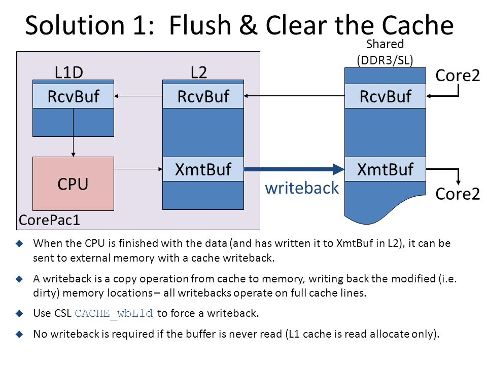 Solution 1: Flush & Clear the Cache