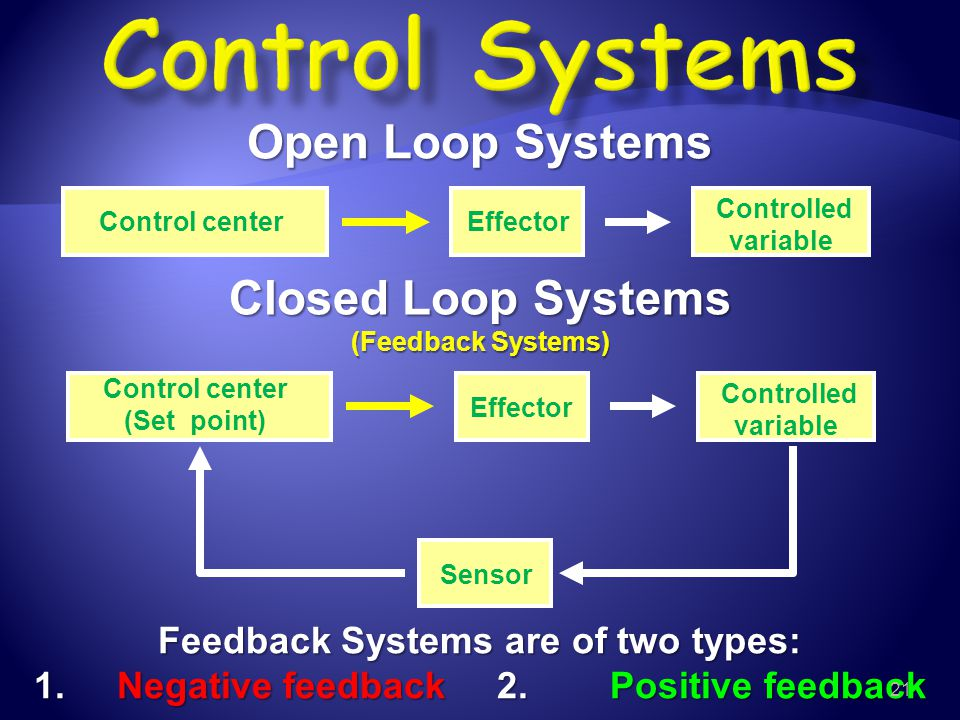 Closed Loop Systems (Feedback Systems)