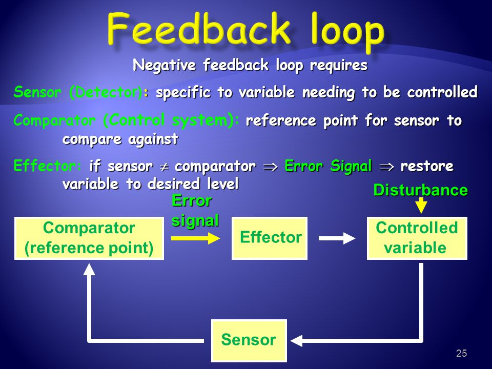 Negative feedback loop requires
