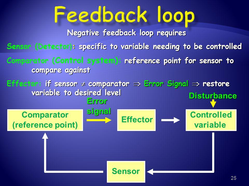 Negative feedback loop requires