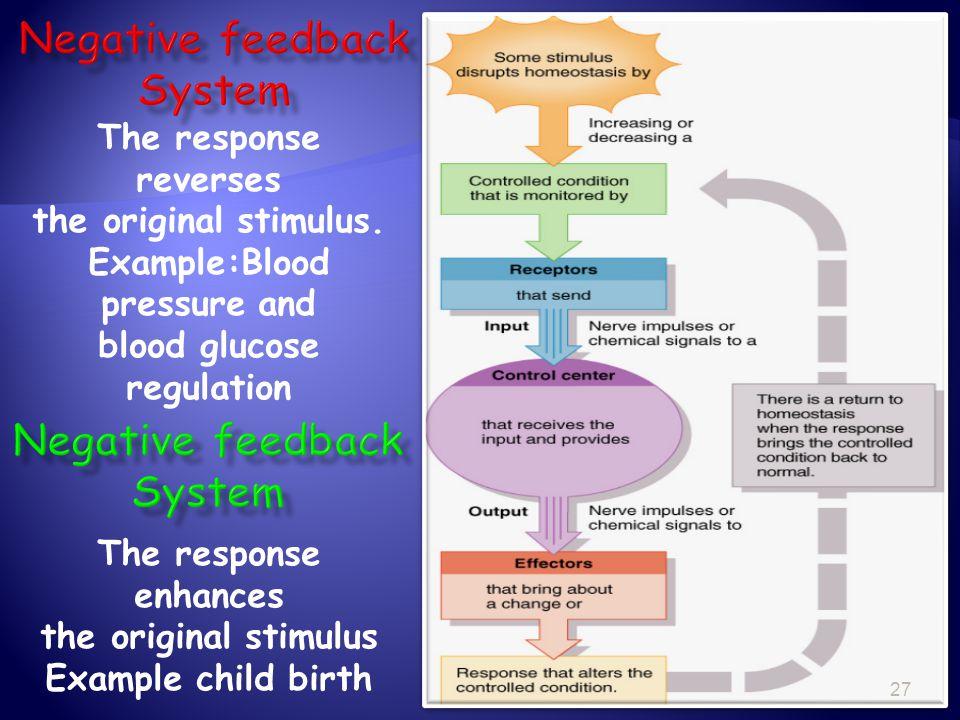 Negative feedback System Negative feedback System