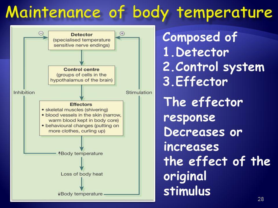 Maintenance of body temperature