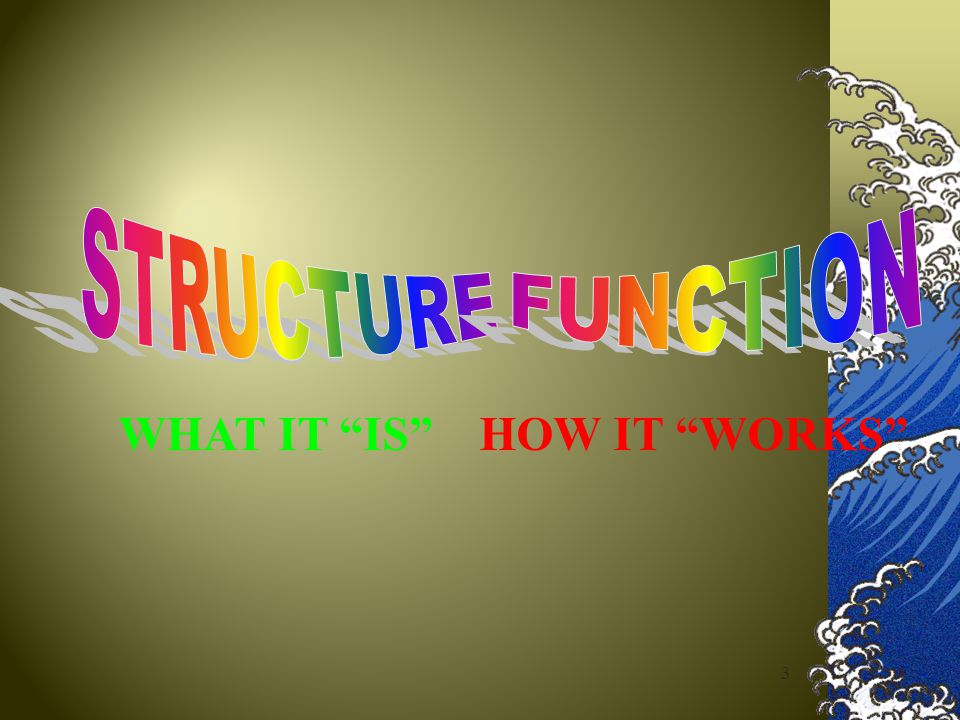 STRUCTURE FUNCTION WHAT IT IS HOW IT WORKS