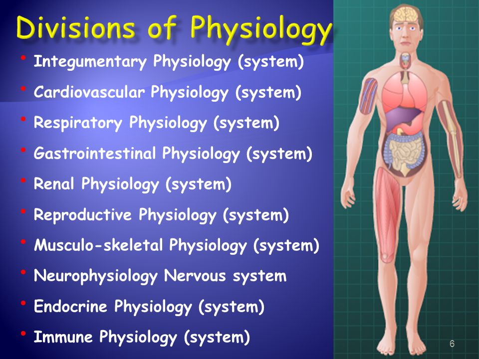 Divisions of Physiology