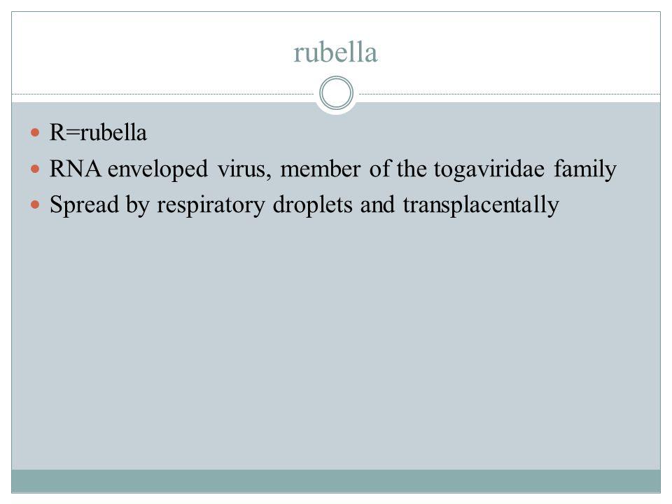 rubella R=rubella.