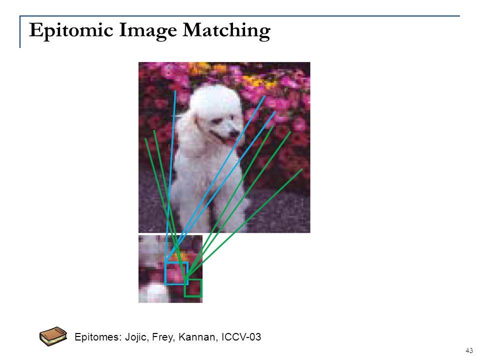 Epitomic Image Matching