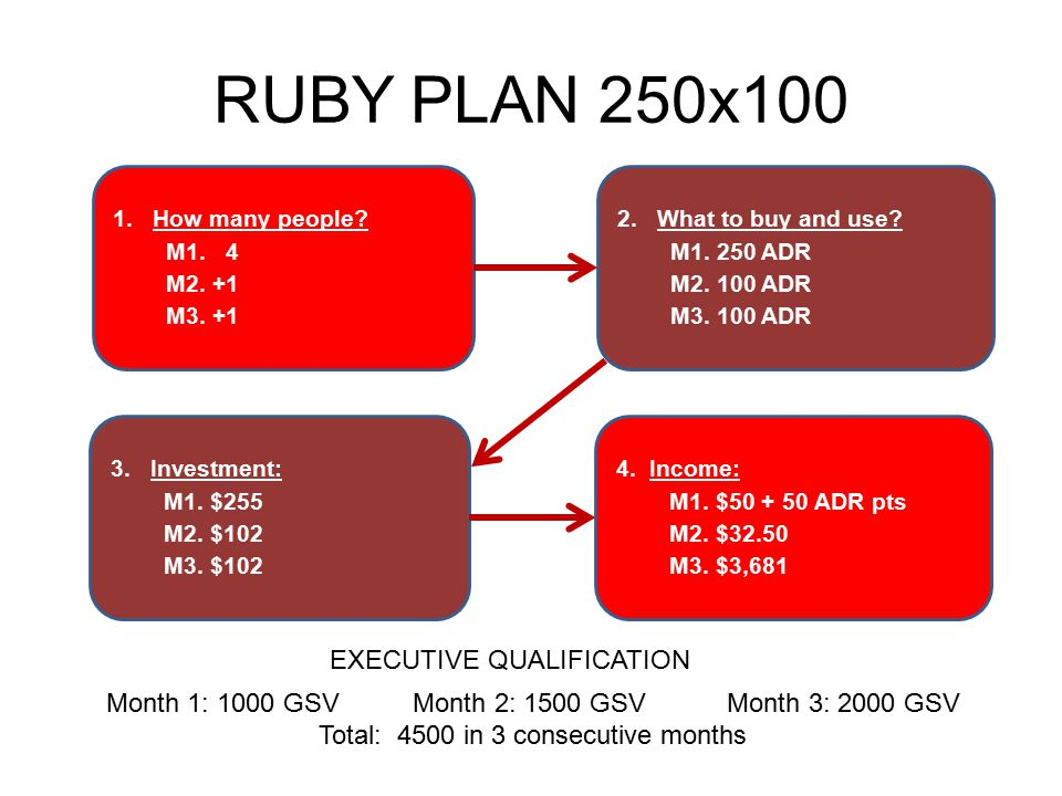 RUBY PLAN 250x100 EXECUTIVE QUALIFICATION