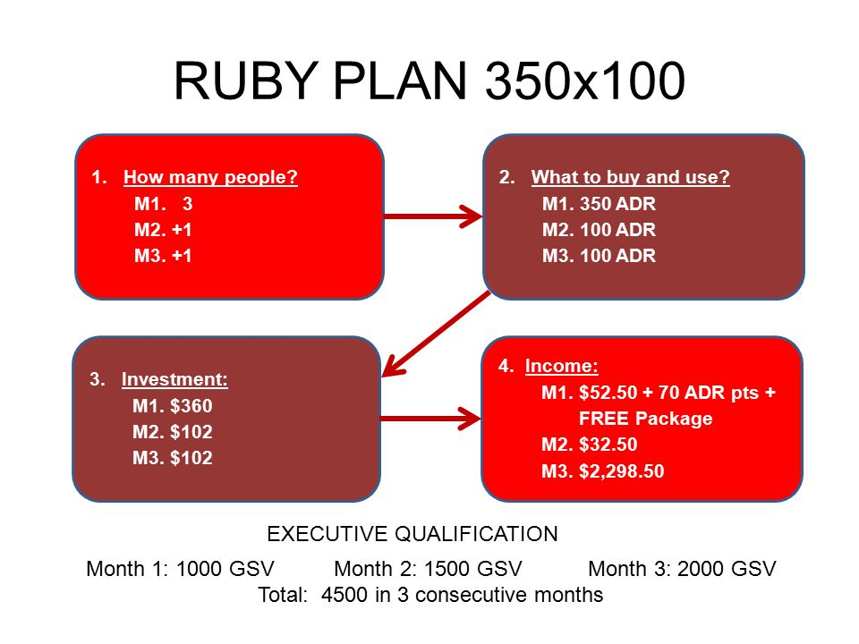 RUBY PLAN 350x100 EXECUTIVE QUALIFICATION