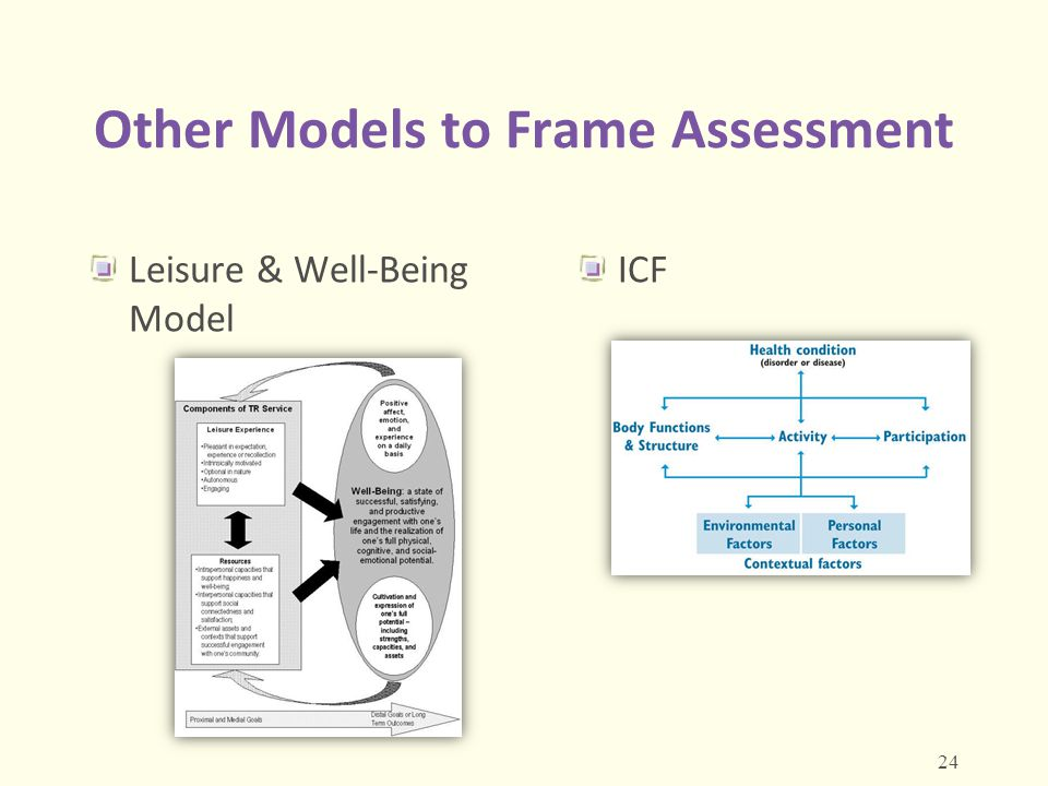 Other Models to Frame Assessment