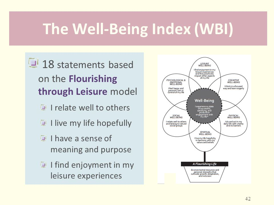 The Well-Being Index (WBI)