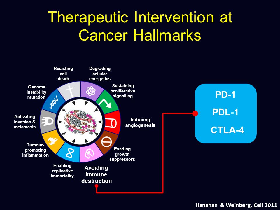 Therapeutic Intervention at Cancer Hallmarks