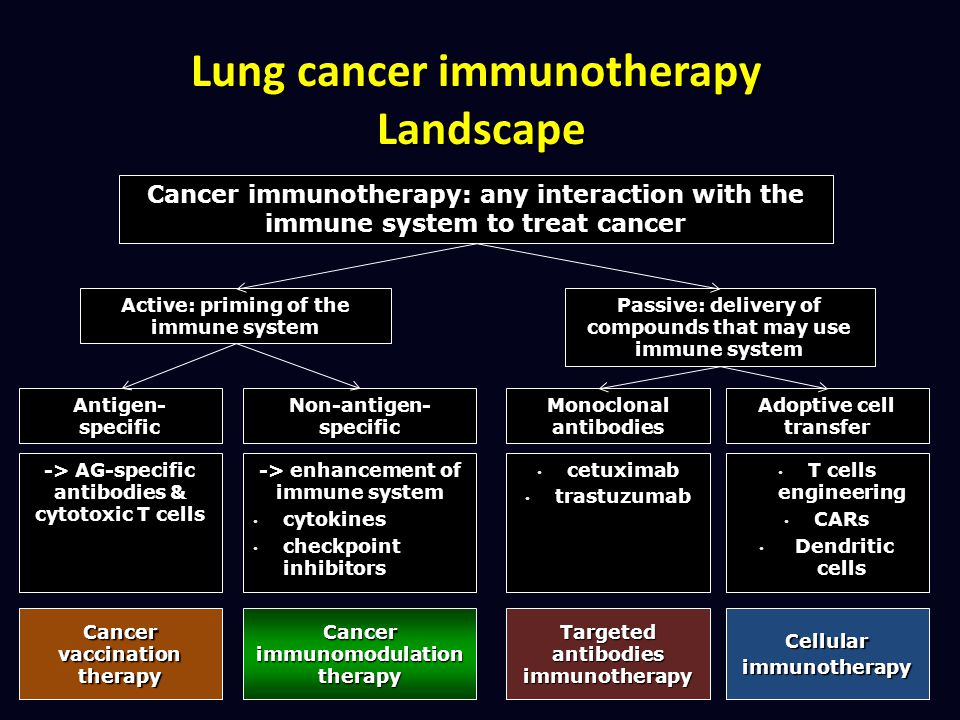 Lung cancer immunotherapy Landscape