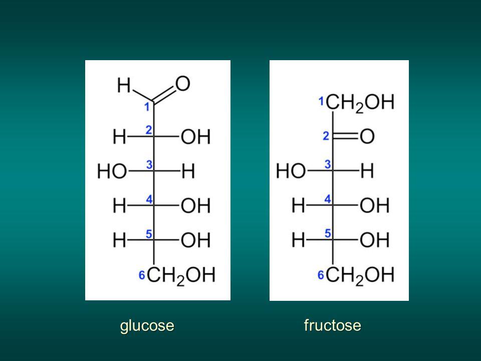 glucose fructose
