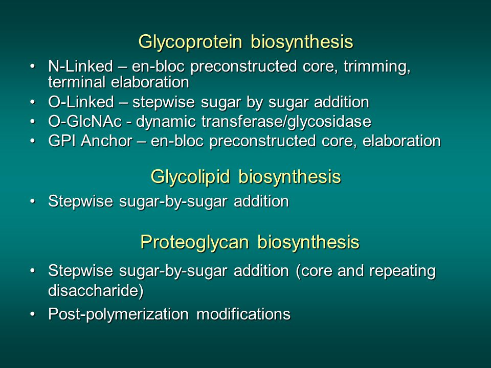 Glycoprotein biosynthesis