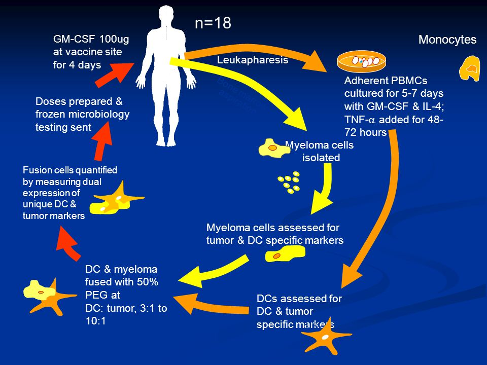 n=18 Monocytes GM-CSF 100ug at vaccine site for 4 days Leukapharesis