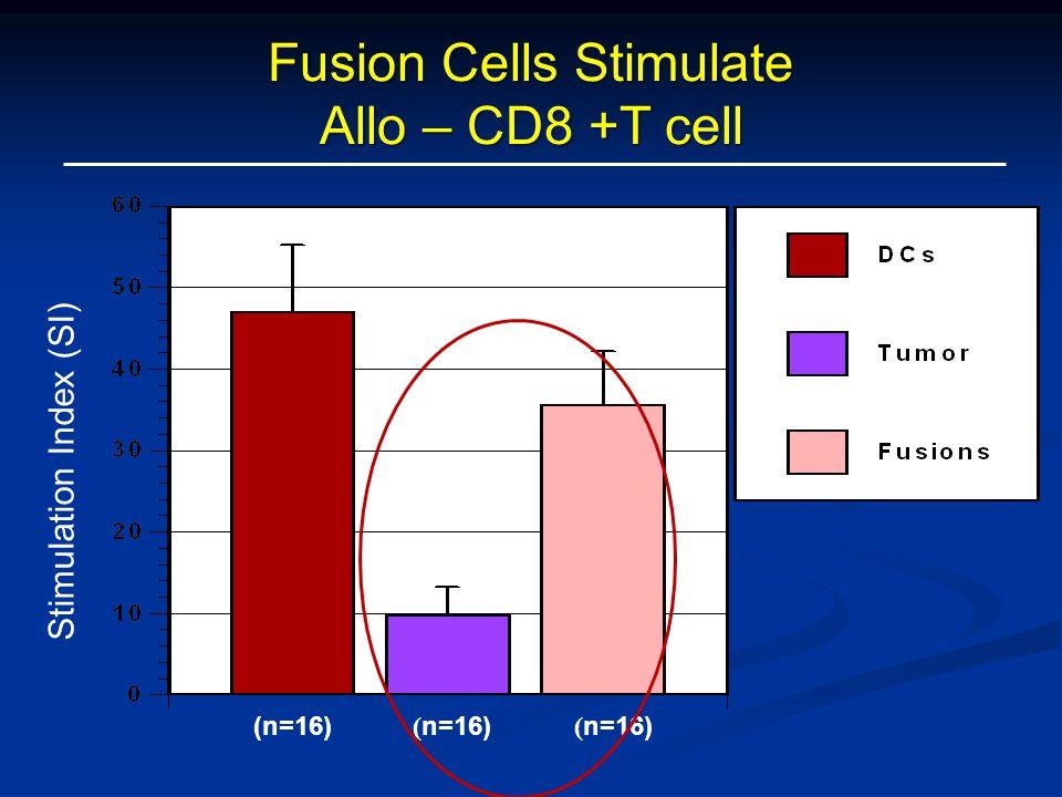 Fusion Cells Stimulate