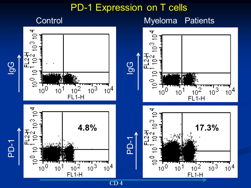 PD-1 Expression on T cells