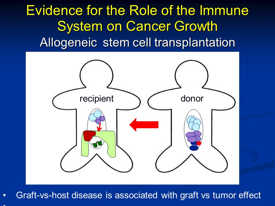 Evidence for the Role of the Immune System on Cancer Growth Allogeneic stem cell transplantation