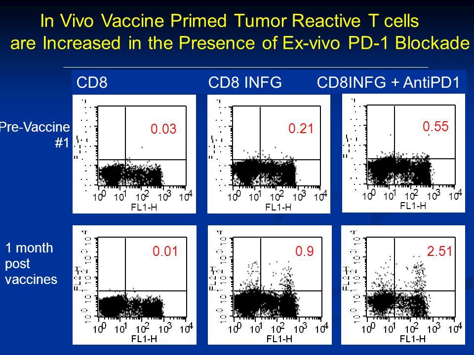 In Vivo Vaccine Primed Tumor Reactive T cells