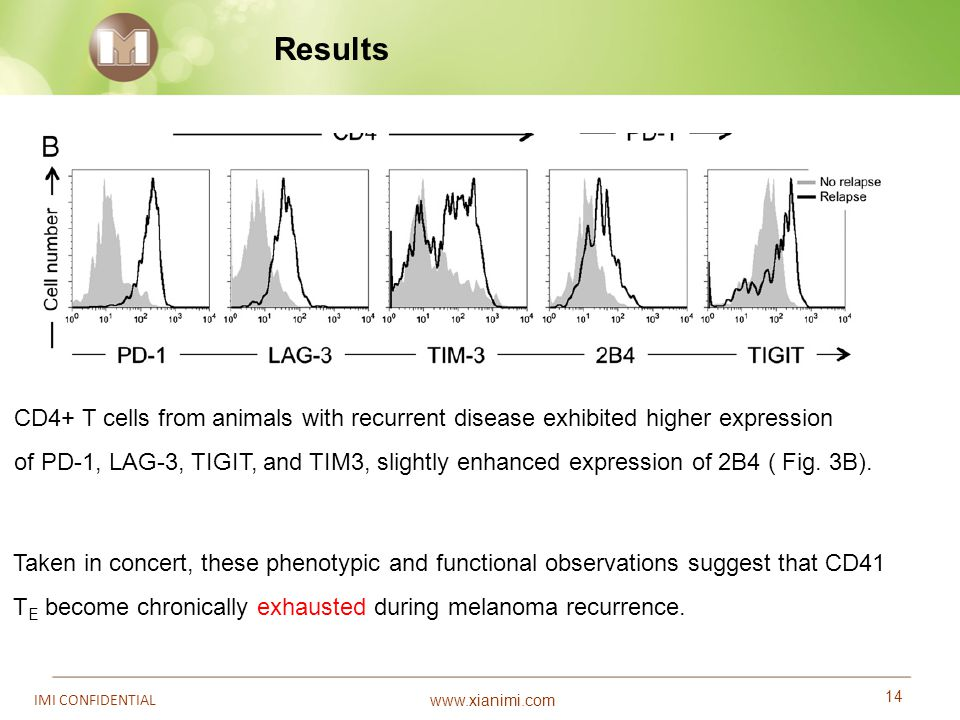 Results CD4+ T cells from animals with recurrent disease exhibited higher expression.