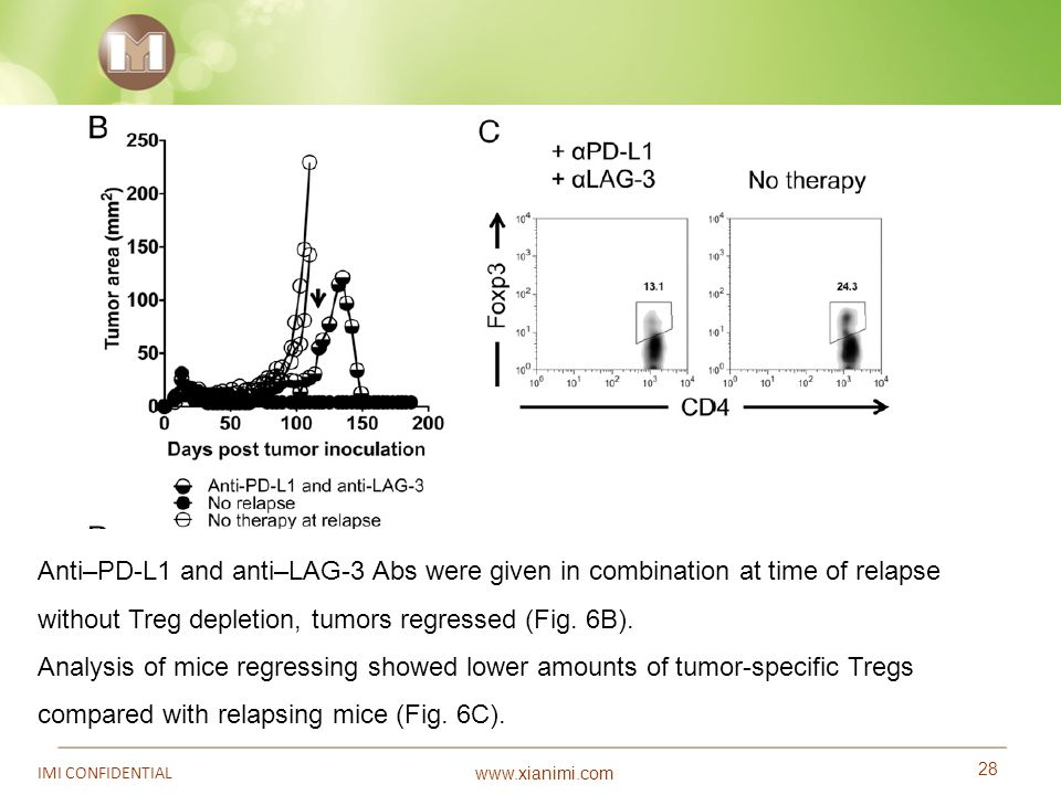 Anti–PD-L1 and anti–LAG-3 Abs were given in combination at time of relapse without Treg depletion, tumors regressed (Fig. 6B).