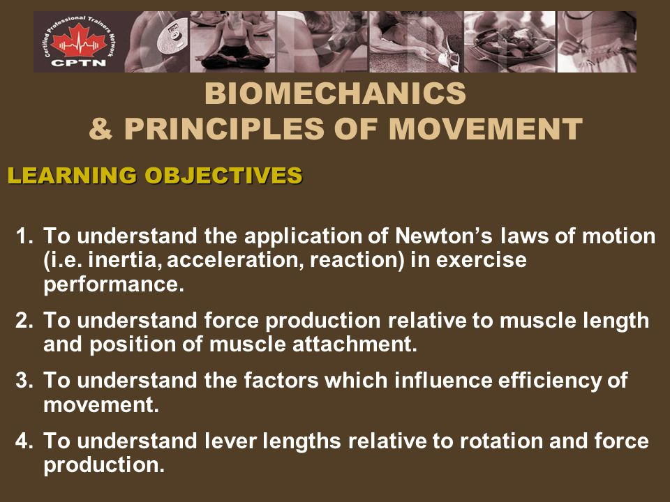 BIOMECHANICS & PRINCIPLES OF MOVEMENT