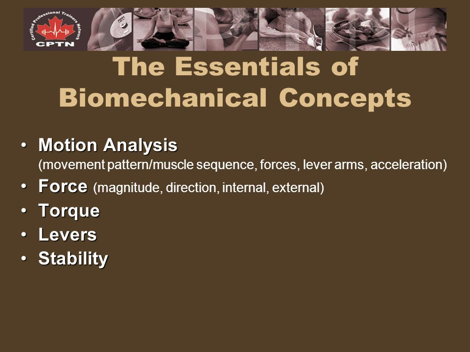 The Essentials of Biomechanical Concepts