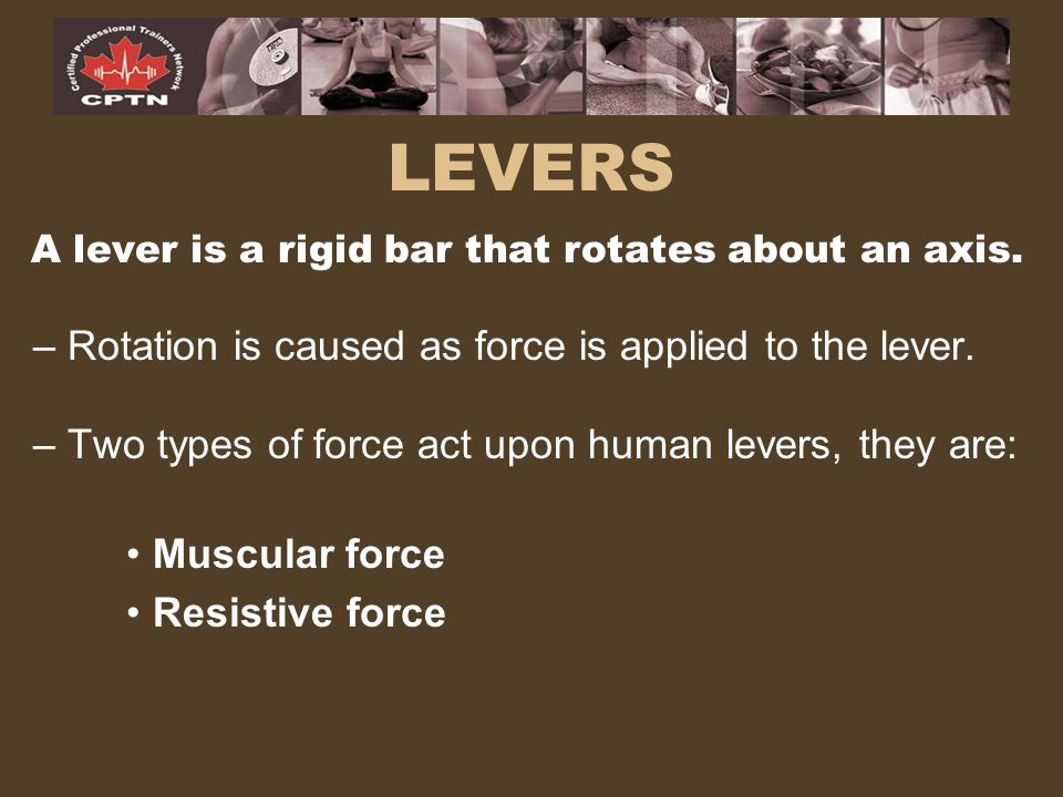 A lever is a rigid bar that rotates about an axis.