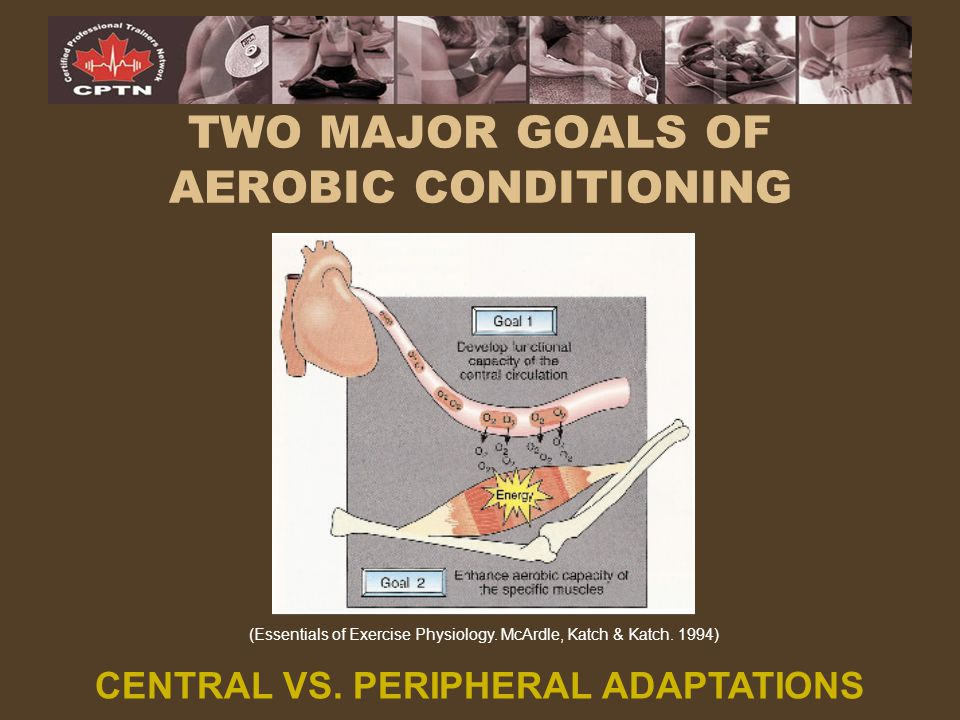 TWO MAJOR GOALS OF AEROBIC CONDITIONING