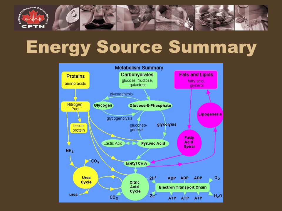 Energy Source Summary