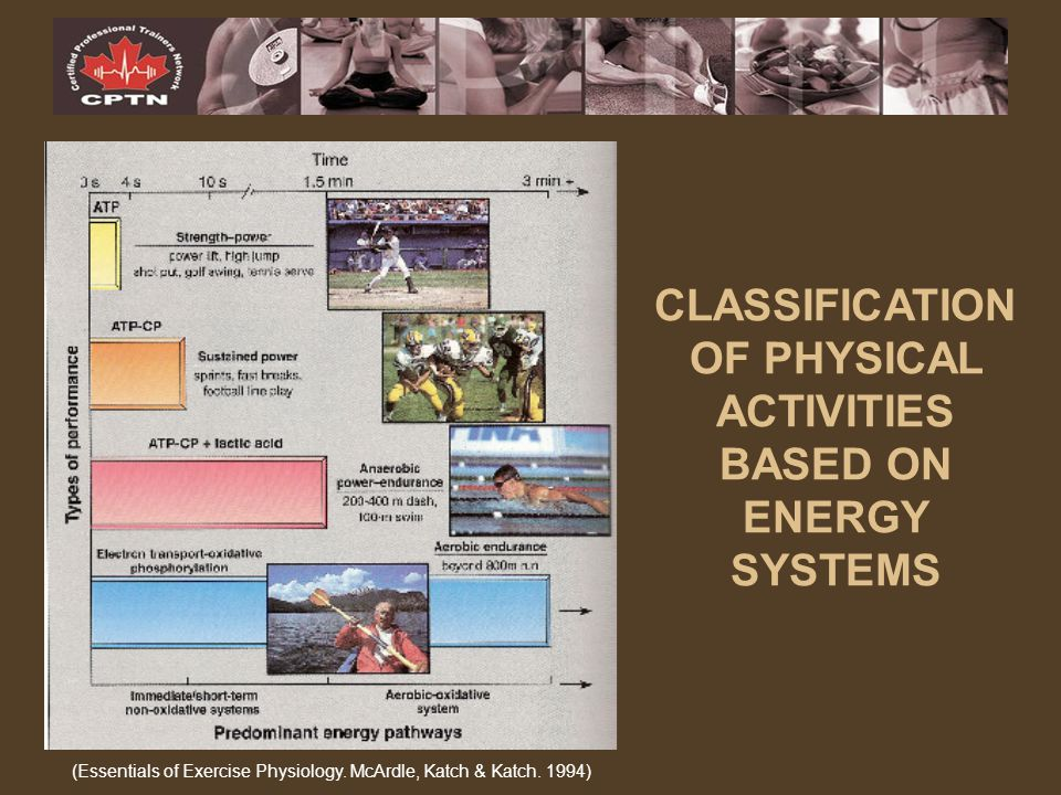CLASSIFICATION OF PHYSICAL ACTIVITIES BASED ON ENERGY SYSTEMS