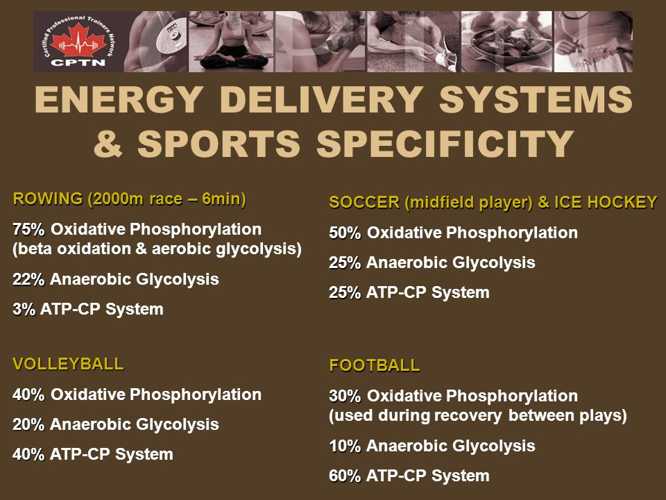 ENERGY DELIVERY SYSTEMS & SPORTS SPECIFICITY