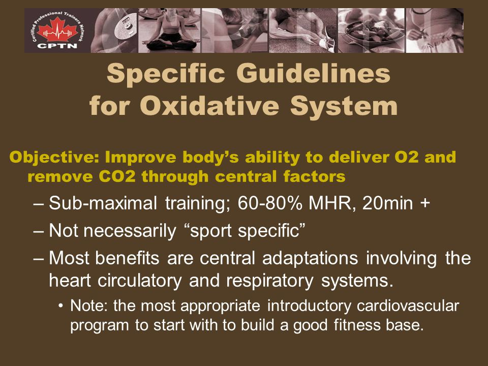 Specific Guidelines for Oxidative System