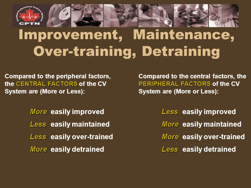 Improvement, Maintenance, Over-training, Detraining